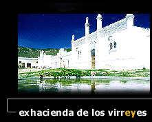 fot_virrey